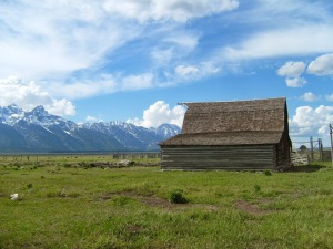 Teton Prairie
