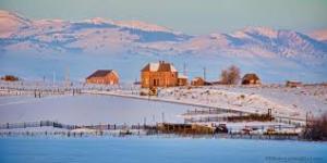 Chesterfield Winter