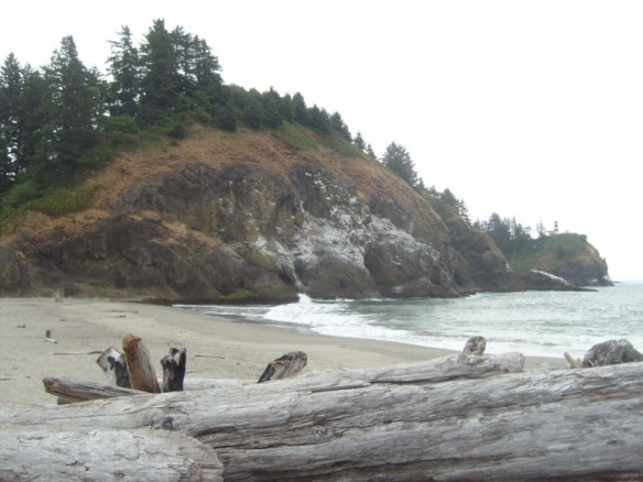 Waikiki Beach Cape Disappointment