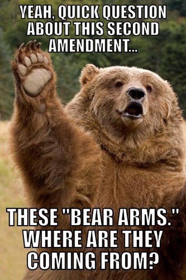 bear-arms