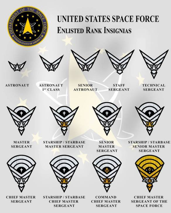 Space Force Enlisted Rank Insignias