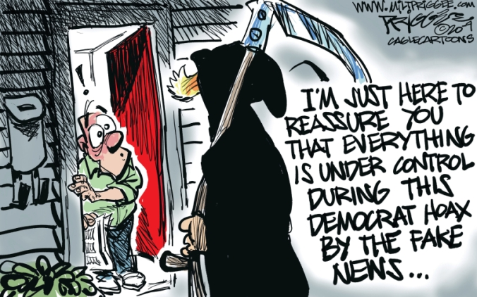 fake news democrat hoas